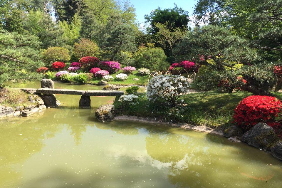 Teich mit Kois im Japanischen Bonsaigarten Ferch, Foto: Schwielowsee Tourismus/Spaak
