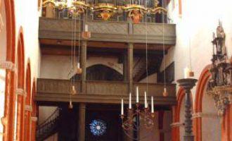 Dom zu Brandenburg an der Havel - Domorgel