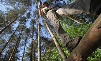 CLIMB UP! - Kletterwald in Klaistow - Hoch hinaus, Foto: Climb Up!