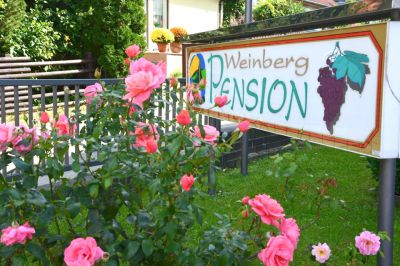Weinberg-Pension mit Familien-Appartment